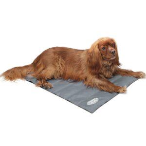 Scruffs & Tramps Avkjølingsmatte for hund grå størrelse M 2717